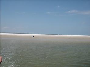 Untouched, Bird Island