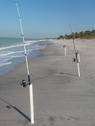 Surf Fishing in Fernandina Beach