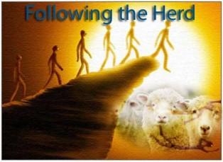 Is Herd Metality Comforting?