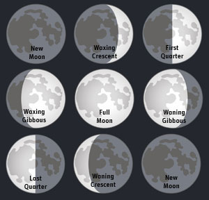 Different shapes of moon