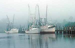 Birthplace of the Modern Shrimping Industry