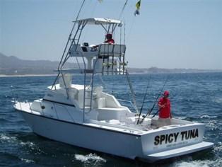 the-spicy-tuna
