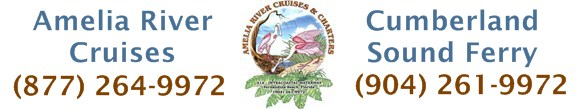 amelia-river-cruises-banner-ad