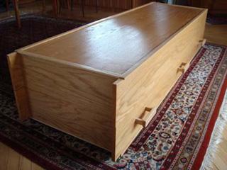 Bookcase Coffin