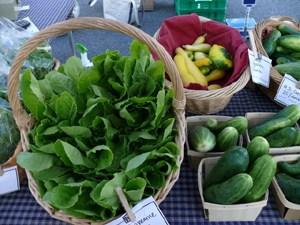 fernandina-farmers-market-contest