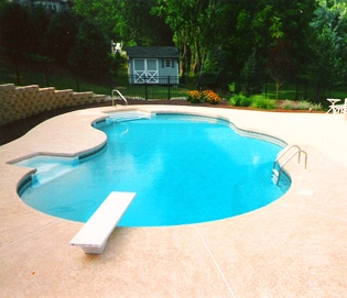 Swimming Pool Business
