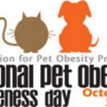 National Pet Obesity Day