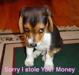 Sorry I Stole Your Money