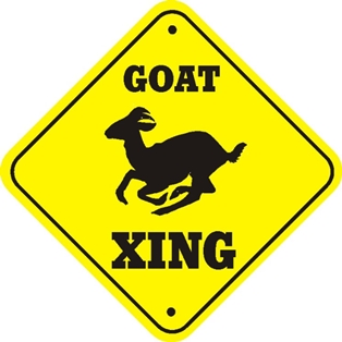 Beware of Goats When Hunting with Rednecks