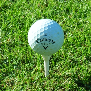 Amelia Island Golf Joke