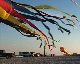 Kites on the Beach