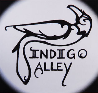 Indigo Alley was Home for the Music Marathon for MDA