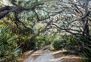 Path to the Beach, By: John Tassey