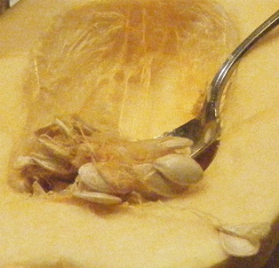 Scooping out Squash