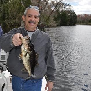 Bass Fishing on Lofton Creek