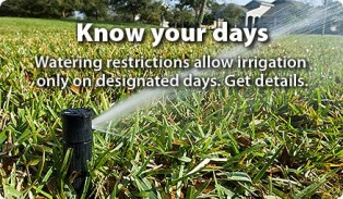 Daylight Saving Watering Restrictions