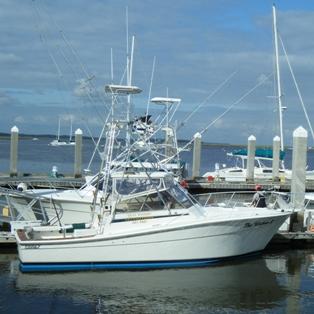 Free Saltwater Fishing