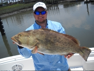 Catching a Trophy of a Grey Grouper
