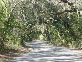Free Admission to Florida State Parks