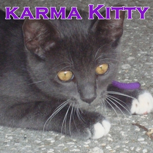 Sometimes Karma is a Cat