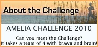Amelia Challenge 2010