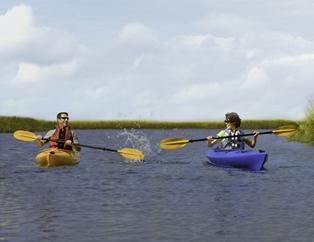 Kayaking Amelia Island