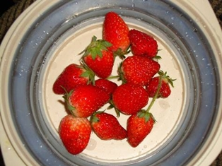 Spring Means Strawberries