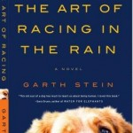 Book Review of The Art of Racing in the Rain