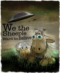Searchamelia.com - Sheeple just want to believe