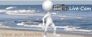 Amelia Island Live Beach Cam