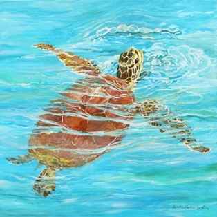 Turtle Trot image for 2012