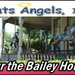 Bailey House Tour Benefits Cats Angels