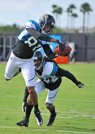 Image found at Jaguars.com