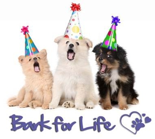 It is time for Bark for Life 2012