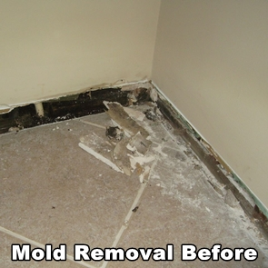 Mold behind baseboards before AdvantaClean