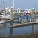 Fernandina Harbor Marina Manager on Jax BOD