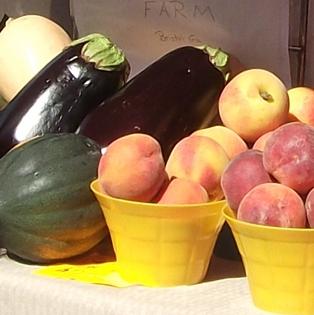 Summer is in Season at the Fernandina Farmers' Market