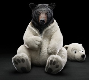 A Bear in Teddy Clothing