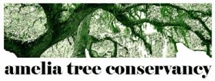 Inaugural Amelia Tree Conservacy Tree Planting