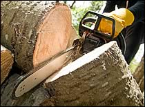 Preventing Injuries From Chain Saws