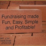 100 Bricks in 100 Days!