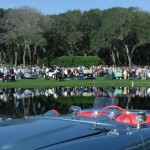 Images for Amelia's 2014 Concours