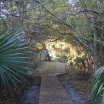 Invasive Exotic Plants Workshop