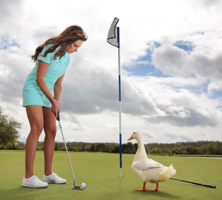 aflac golf duck