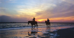 """Amelia Island Awarded """"Best of Show"""" In Statewide Advertising Programs"""