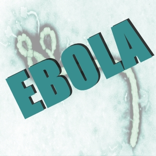 First Confirmed Case of Ebola in United States