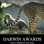 Revisiting the Darwin Awards
