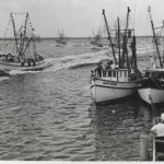 Brendan Burke Presents Shrimp Boat Fleet at Amelia's Museum