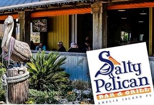 salty-pelican