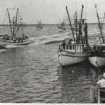 Grand Opening of Fernandina Beach Shrimping Museum